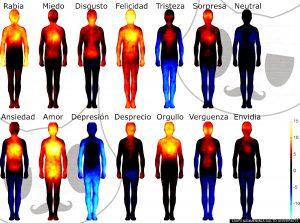 emociones-corporales