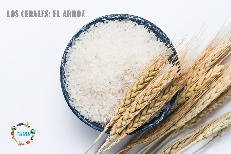 Los cereales- El arroz