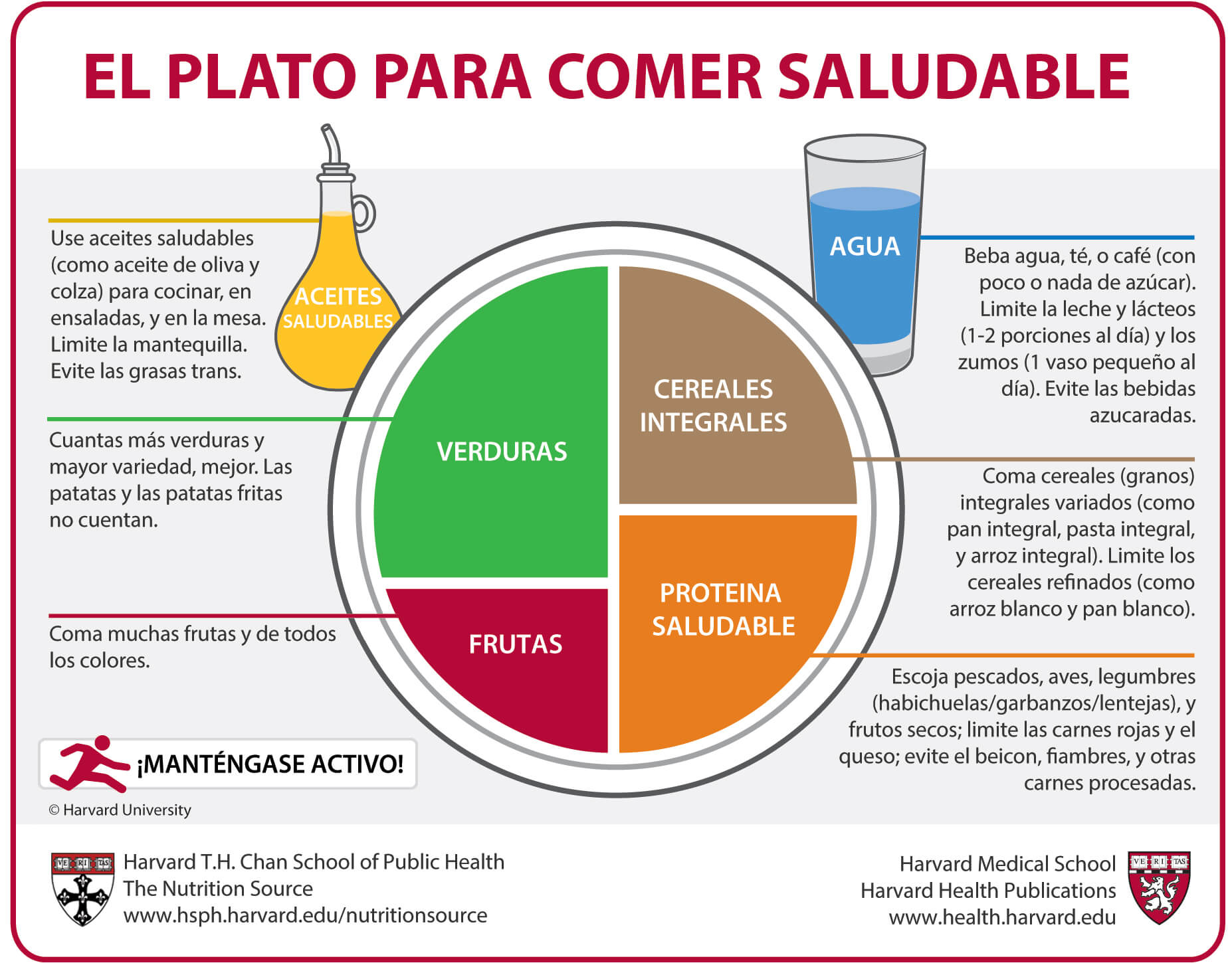 plato harvard enfoque clasico